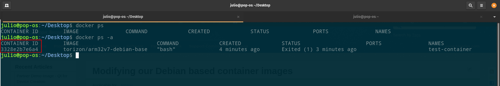 Docker container ID