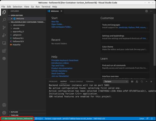 C/C++ project